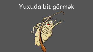 Photo of Yuxuda bit gormek