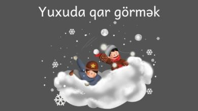 Photo of Yuxuda qar gormek