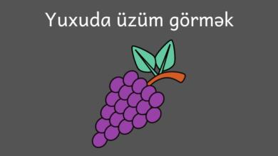 Photo of Yuxuda uzum gormek
