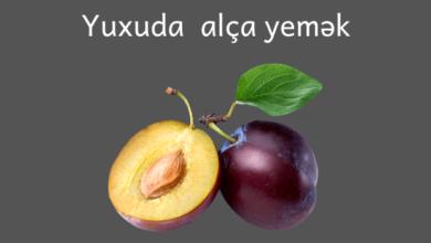 Photo of Yuxuda alca yemek ✅