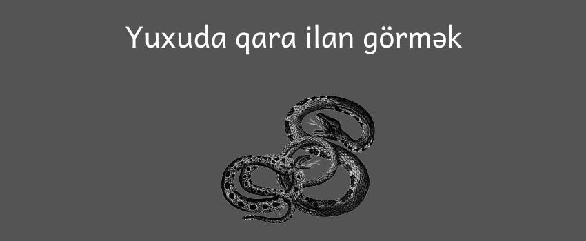 Yuxuda Qara Ilan Gormek Haqqinda Hərsey Bu Yazida