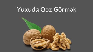Photo of Yuxuda Qoz Görmək ✅