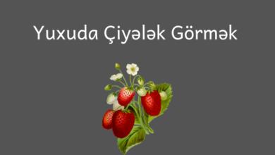 Photo of Yuxuda Ciyelek Gormek ✅