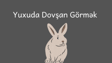 Photo of Yuxuda Dovsan Gormek ✅