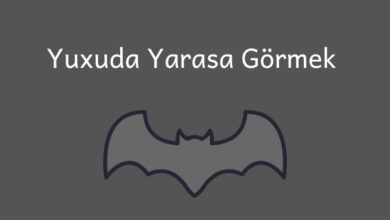 Photo of Yuxuda Yarasa Gormek