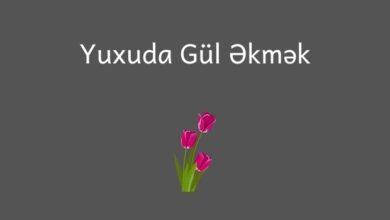 Photo of Yuxuda gul ekmek